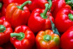 Куча красного перца сладостного колокола Стоковое фото RF