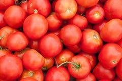 Куча красных томатов стоковое фото
