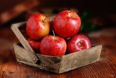 Куча красных яблок Стоковое Изображение