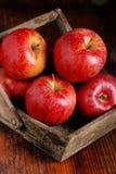 Куча красных яблок Стоковое Фото