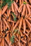 куча морковей Стоковая Фотография RF