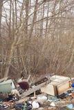 Куча отброса в древесинах Стоковая Фотография RF