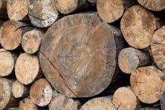 Куча отрезанного дерева вносит деревянную предпосылку в журнал текстуры внешнюю Стоковое фото RF