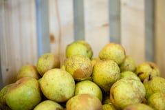 Куча плода груши штабелированная с деревянной предпосылкой стоковая фотография rf
