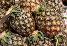 Куча плодоовощей зрелого ананаса всех с зеленым стержнем Стоковое фото RF