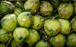 Куча плодоовощей кокоса Стоковое Изображение