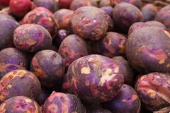 Куча пурпуровых картошек Стоковое фото RF