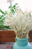 Куча пшеницы Стоковые Изображения RF