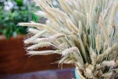 Куча пшеницы Стоковое Изображение