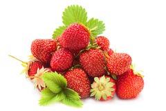 Куча плодоовощ клубники с лист Стоковое Фото