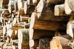 Куча древесины вносит хранение в журнал для индустрии Стоковое Изображение RF