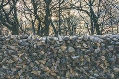Куча древесины Стоковые Изображения RF