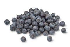 Куча свежих голубых ягод стоковые фото