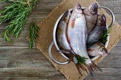 Куча свежих сырых рыб на деревянной предпосылке Взгляд сверху вырезуб Стоковые Изображения