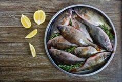 Куча свежих сырых рыб на подносе на деревянной предпосылке Взгляд сверху вырезуб Стоковое фото RF
