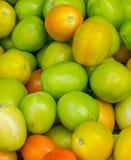 Куча свежих томатов стоковые изображения rf