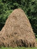 Куча сена  Стоковая Фотография
