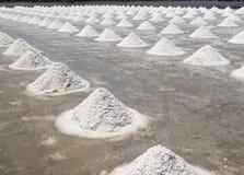 Куча соли в поле соли перед сбором Стоковое Изображение RF