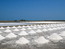 Куча соли в поле соли перед сбором Стоковые Фото