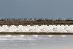 Куча соли в поле соли перед сбором Стоковая Фотография RF