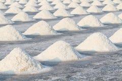 Куча соли в поле соли перед сбором Стоковые Изображения