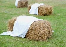 Куча соломы на траве Стоковое Изображение