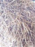 Куча соломы Таиланда Стоковое Изображение RF