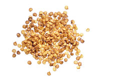 Семена перца Chili Стоковые Фотографии RF