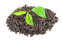 Куча сухого черного чая с листьями зеленого чая Стоковая Фотография