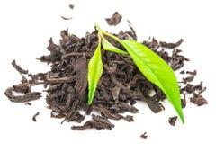 Куча сухого черного чая с листьями зеленого чая Стоковые Фото