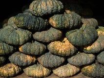 Куча тайских тыквы или сквоша, тыквы Стоковые Фото