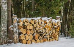 Куча швырка на крае леса Стоковая Фотография
