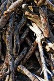 Куча швырка Стоковое Изображение RF