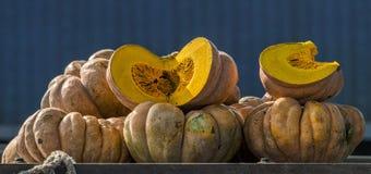 Куча ярких желтых тыкв подготавливает для продажи Стоковые Фото