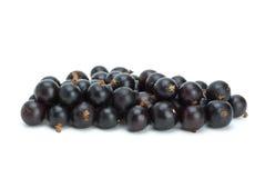 куча blackcurrant ягод малая стоковое изображение