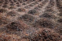 Кучи земли стоковое изображение rf