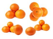 Кучи множественных зрелых свежих сочных tangerines, изолированные над белой предпосылкой Стоковое фото RF