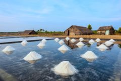 Кучи соли на полях Стоковые Изображения RF