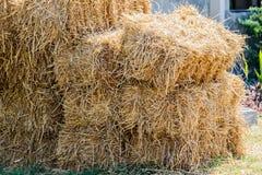 Кучи соломы, детали сложенной соломы для корма для животных Стоковые Изображения RF