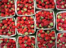 кучи ягод Стоковое Изображение RF