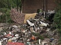 Кулачок нищеты Ilegals на Италии Стоковые Изображения RF