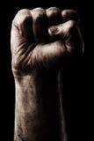 Кулачок обхваченный мужчиной стоковое изображение