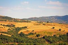 Культивируемые поля в Греции Стоковая Фотография