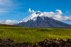 Культивируемые поля и вулкан Котопакси Стоковые Фотографии RF