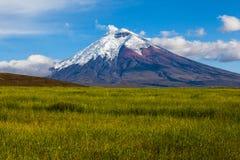 Культивируемые поля и вулкан Котопакси Стоковые Изображения RF