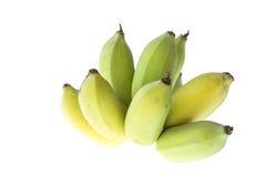 Культивируемый банан, тайский банан изолированный на белизне Стоковые Фото