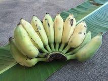 Культивируемый банан, тайский банан и зеленый банан листают Стоковое фото RF