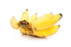 культивируемый банан Стоковое фото RF