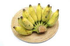 культивируемый банан Стоковые Изображения RF