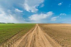 Культивируемый зеленый луг сельское место Стоковое Изображение RF